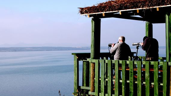 Bird watching on Vrana Lake / Author: Arhiva JUPP Vransko jezero