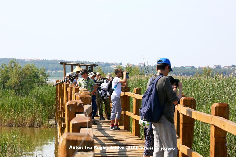 22 September - 29 September  Tennis & birdwatching   Losinj, Kvarner bay