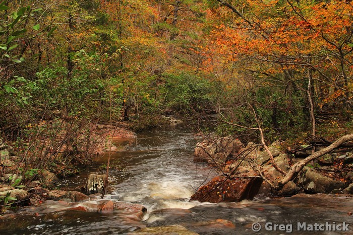 Autumn Colors on Pickle Creek 1