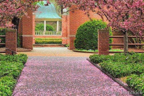 Photographs Of Missouri Botanical Gardens