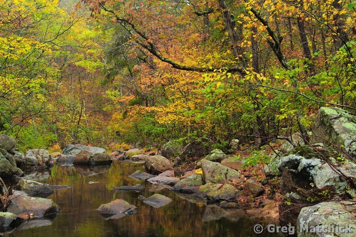 Autumn Serenity on Pickle Creek 1