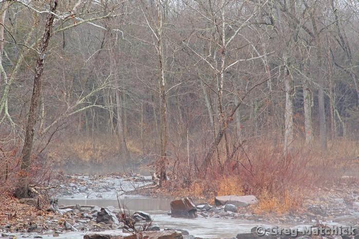 Foggy Morning on Marble Creek 1