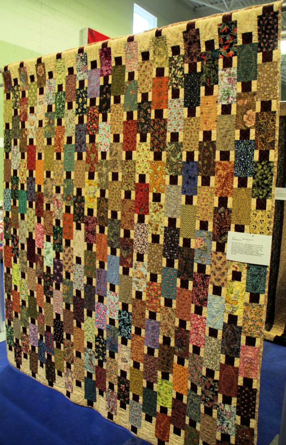 Bedford Friendship Quilters Guild, May, 2012 012.jpg