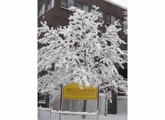 Snow2.jpeg