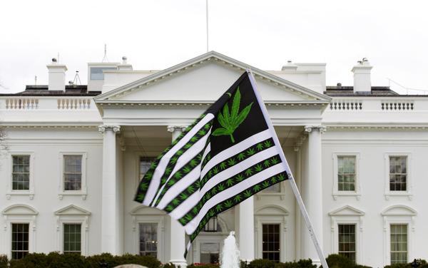 pot flag at white house rally.jpg