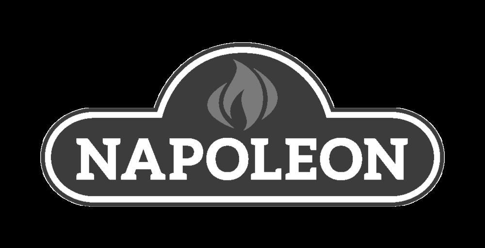 napoleon-logo-bw-79123-1.png