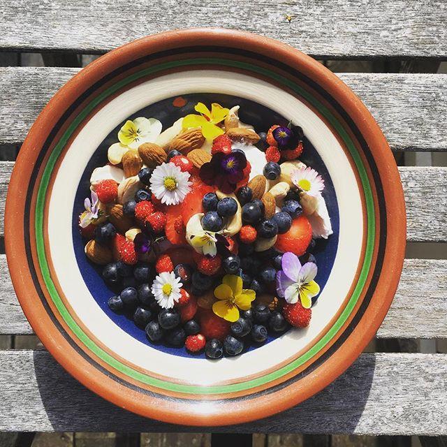 Sommarfrukosttallrik med jordgubbar och smultron från egen täppa samt blåbär från skogen runt hörnet. #kockenplockar #svensksommar #växtbaserat #plantbased #fridhemsgatan #mathantverk #svenskabär