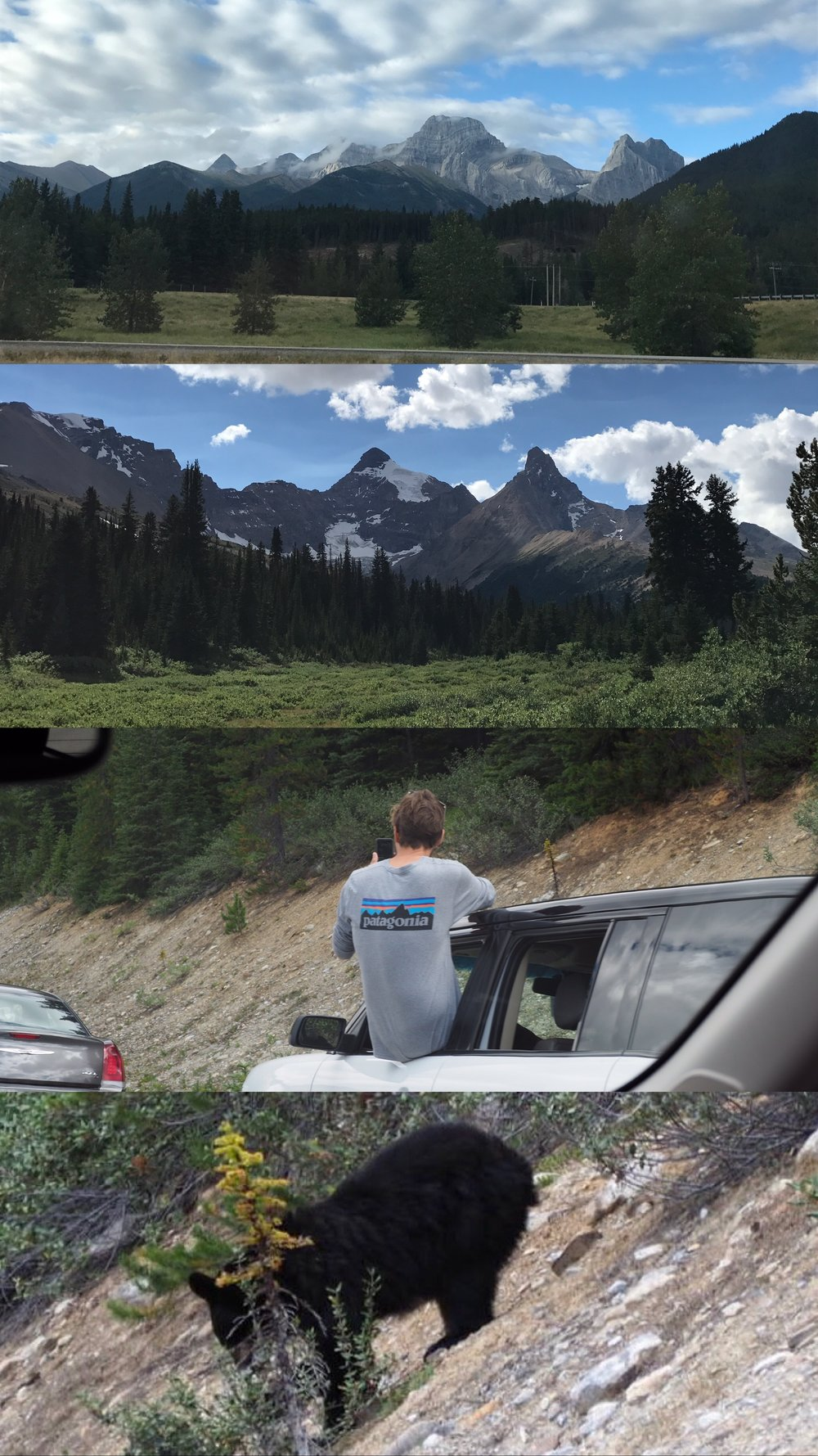 I got my rental car as soon as I could and drove to Banff in the eastern Canadian Rockies. Promptly met with Mia's family and we headed out for the day - saw bears on the side of the road