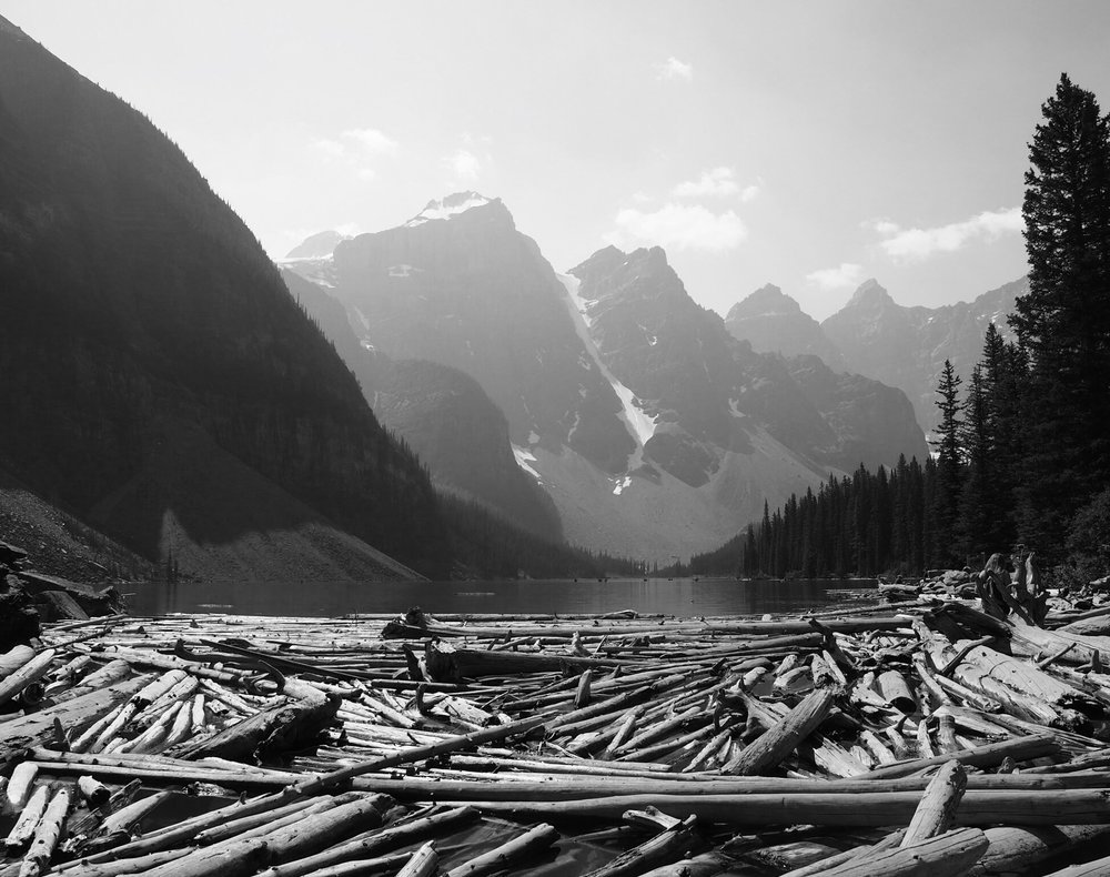 a natural damn of logs bottlenecks the glacial runoff from leaving Lake Moraine, also allowing a crossing to a large rock pile to climb.