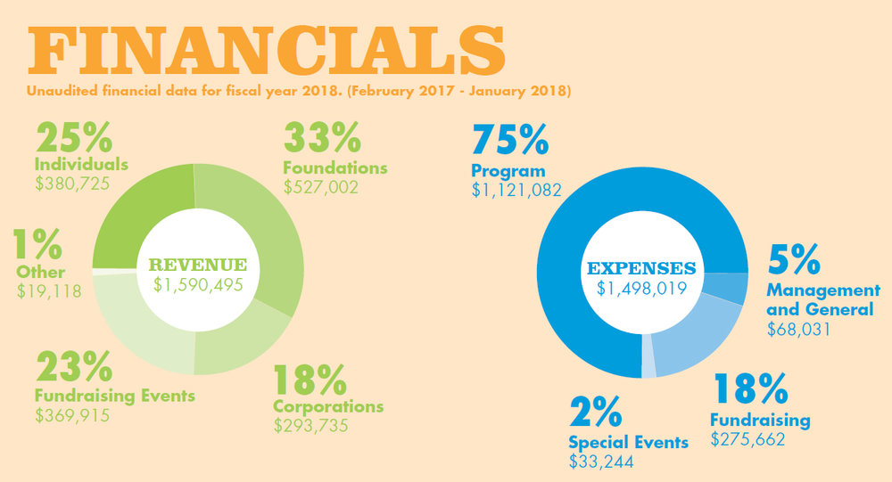 FYE2018 Financial Charts.jpg