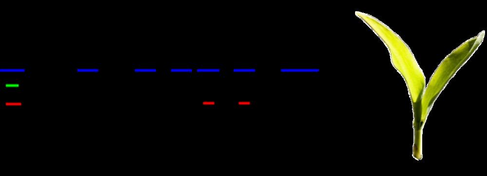 181119_progeny-logo-transparent_ah (1).png