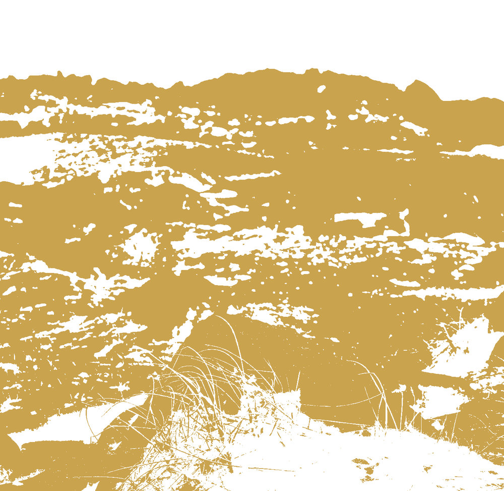 textures16a.jpg