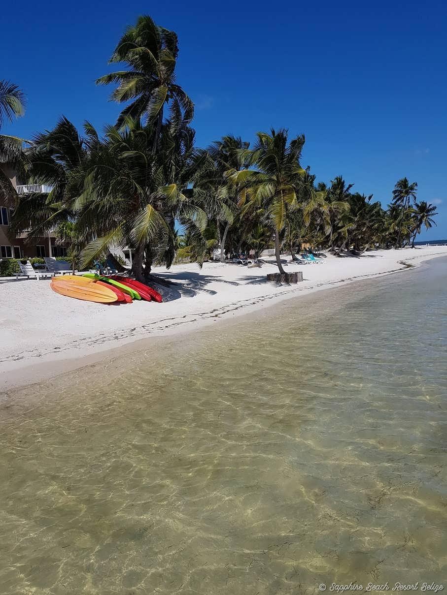 Sapphire Resort Beach 12.jpg