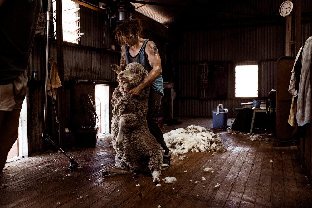 Woolshed_Australia_1.jpg
