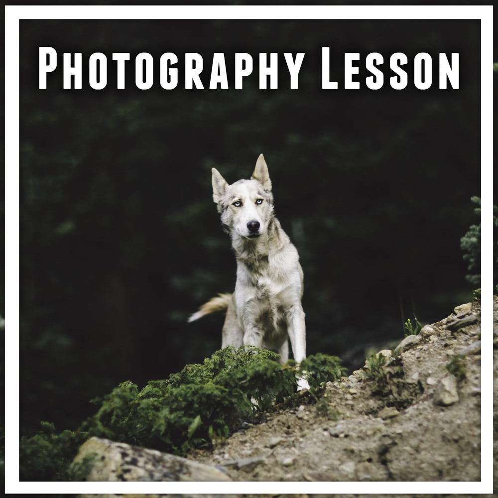 Photography Lesson Graphic.jpg
