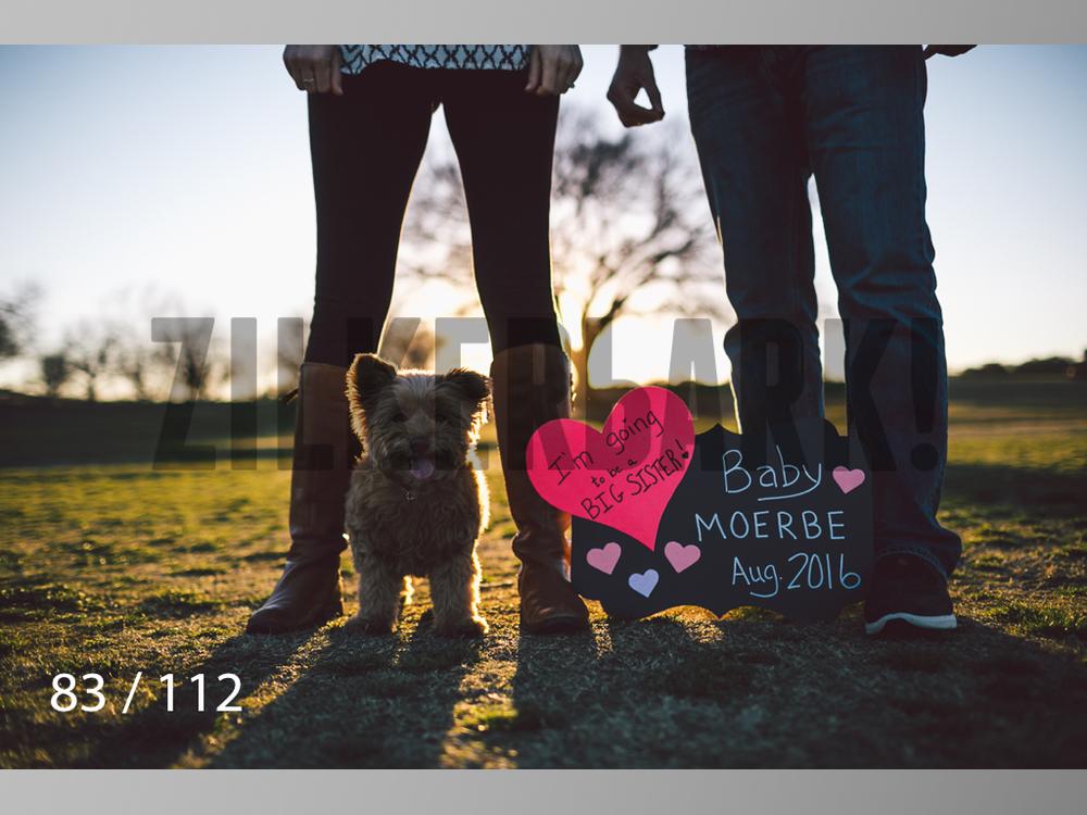 Dog Shoots-083.jpg