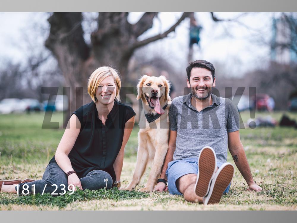 2.20 Dogs-181.jpg