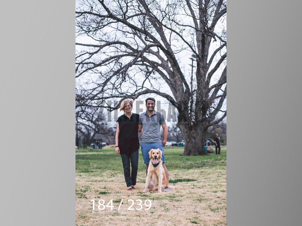 2.20 Dogs-184.jpg