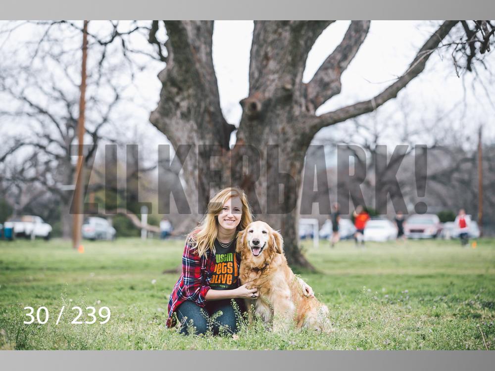 2.20 Dogs-030.jpg