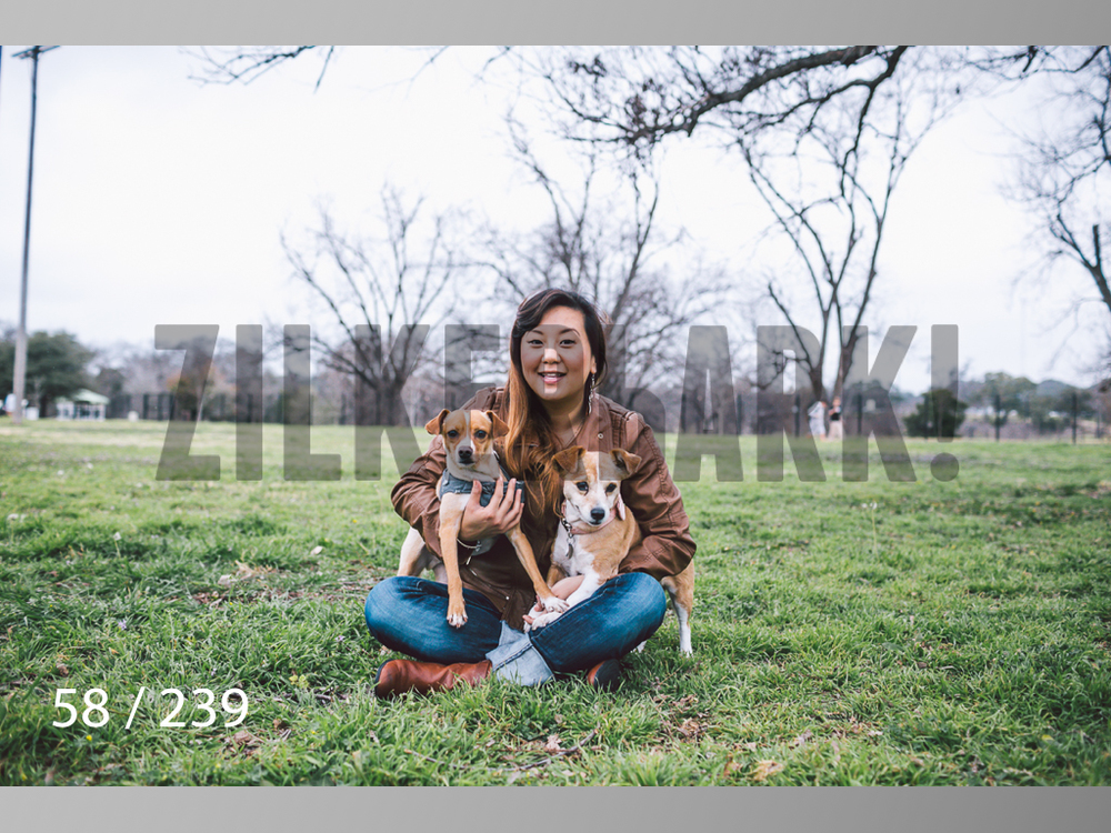 2.20 Dogs-058.jpg