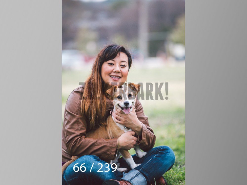 2.20 Dogs-066.jpg