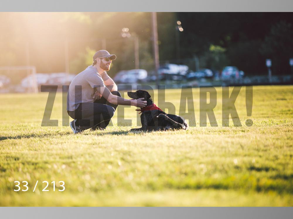 Dogs Rest WM-033.jpg