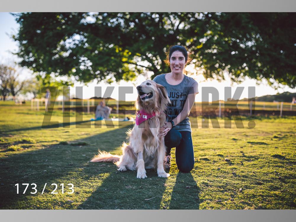 Dogs Rest WM-173.jpg
