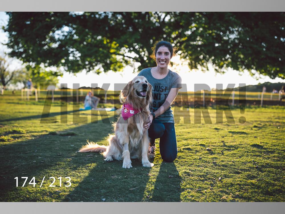 Dogs Rest WM-174.jpg