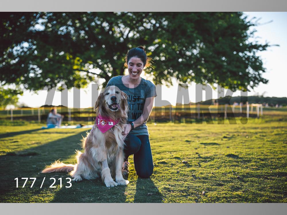 Dogs Rest WM-177.jpg