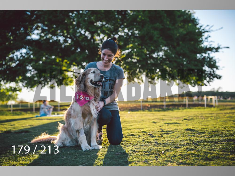 Dogs Rest WM-179.jpg