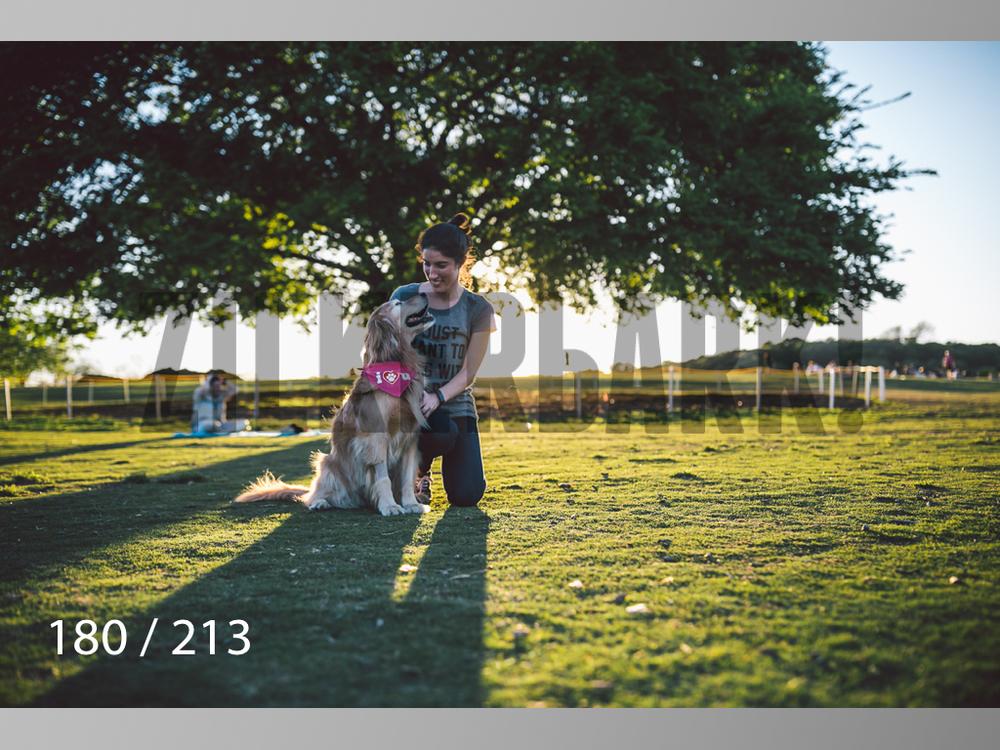 Dogs Rest WM-180.jpg