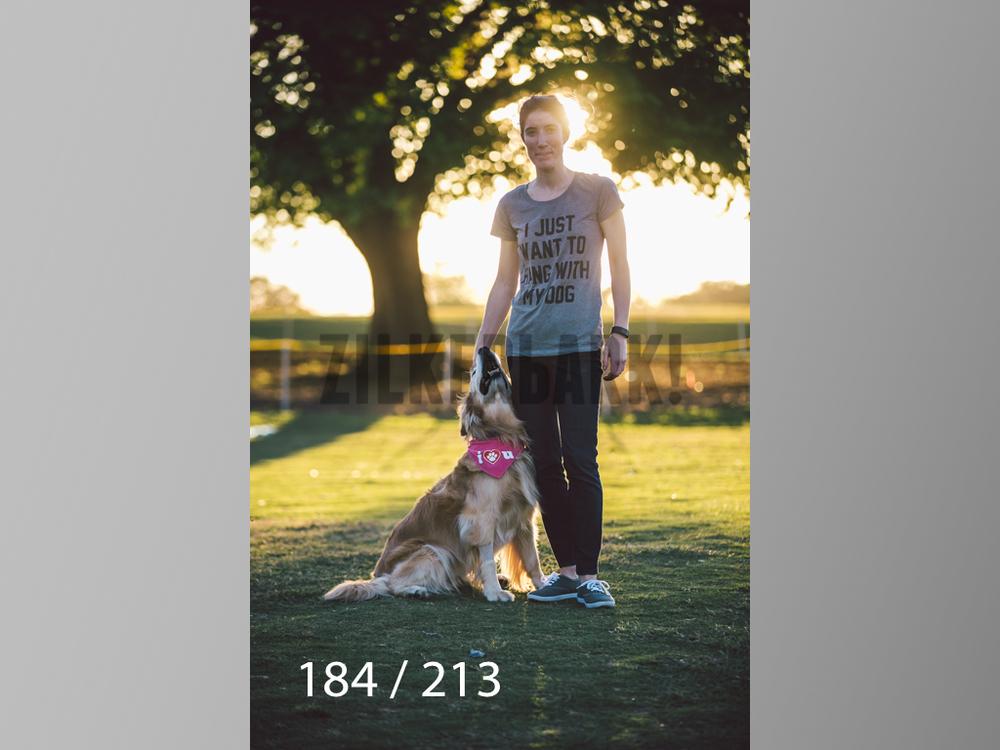 Dogs Rest WM-184.jpg