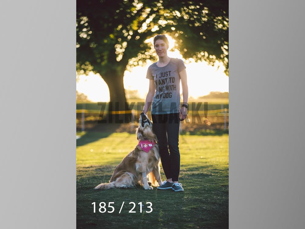 Dogs Rest WM-185.jpg