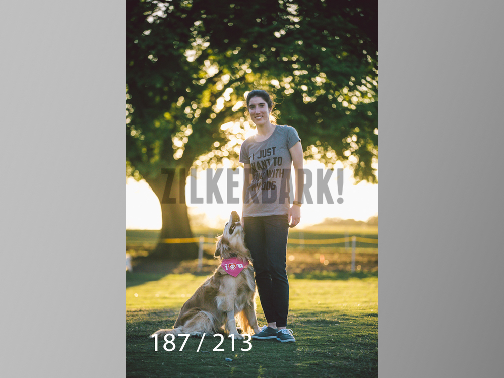 Dogs Rest WM-187.jpg