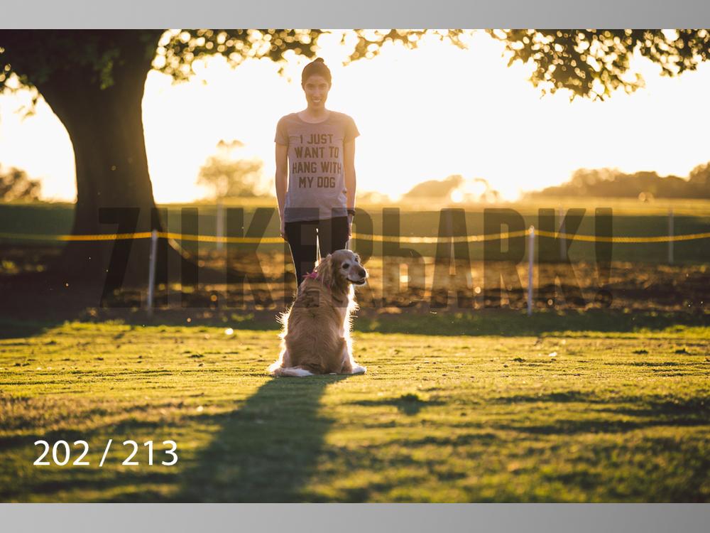 Dogs Rest WM-202.jpg