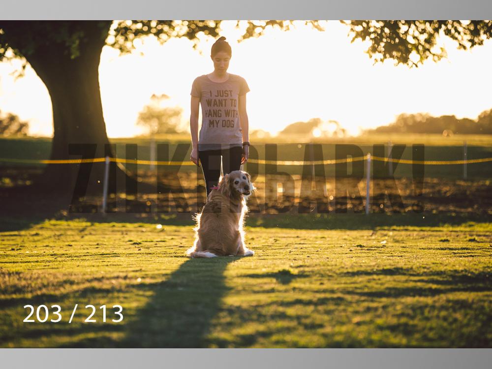 Dogs Rest WM-203.jpg