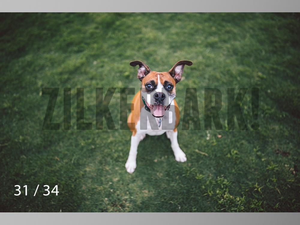 Patsy Cline WM-31.jpg