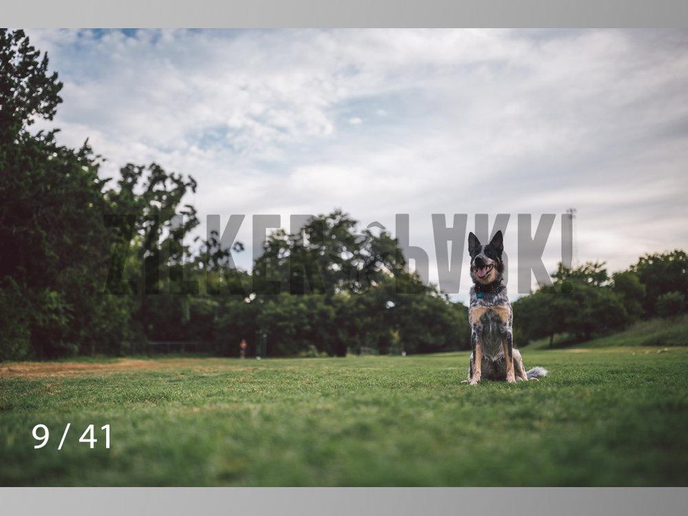WM-09.jpg