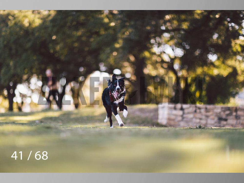 WM-41.jpg