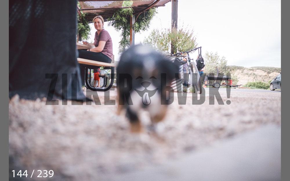 Durango All-144.jpg