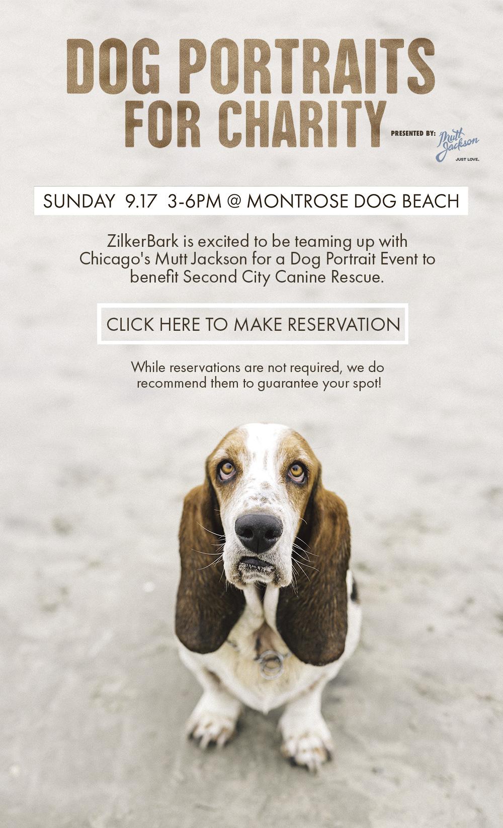 Montrose Beach Eventy Flyer Web.jpg