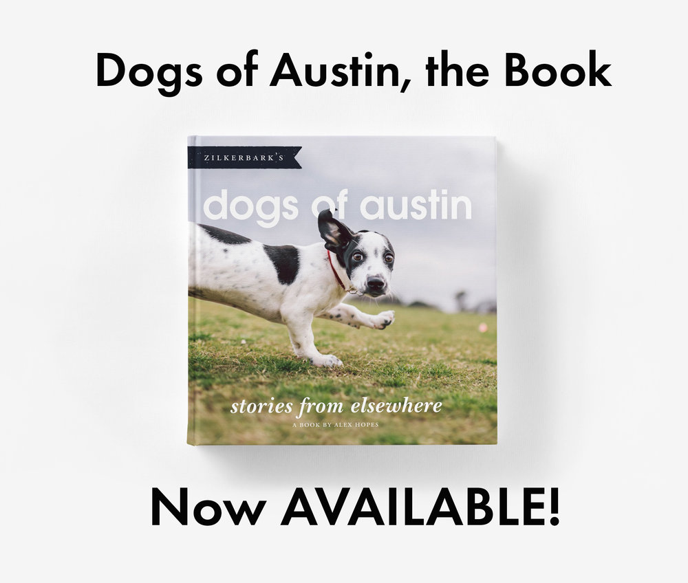Dogs of Austin WEB.jpg