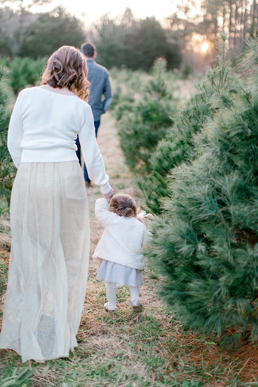 NikkiSanterrePhotography_ChristmasTreeFarmFamilySession_Hoffmeister-76.jpg