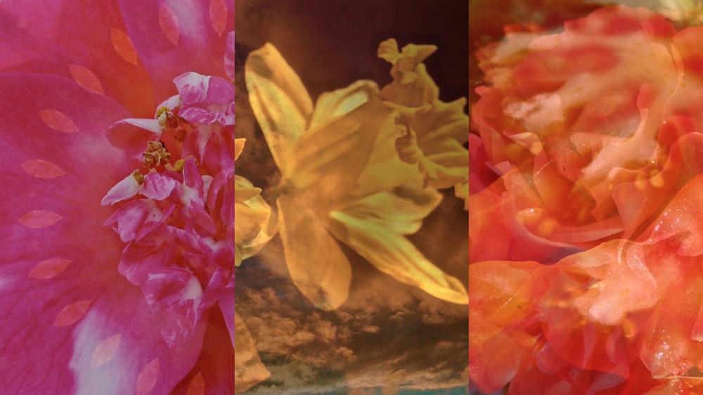 1366x1768-triptych-18DECJpgs.002.jpeg