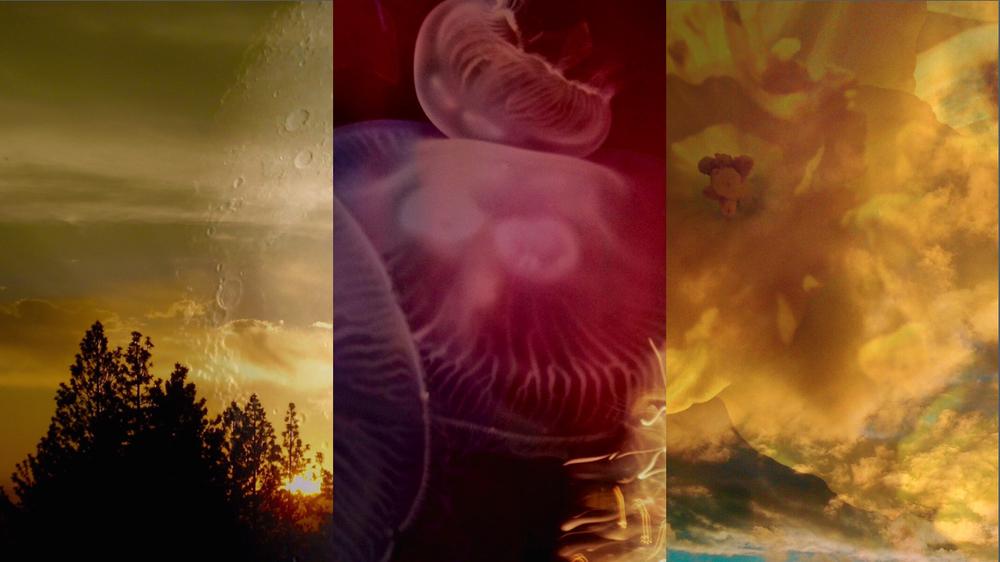 1366x1768-triptych-18DECJpgs.003.jpeg