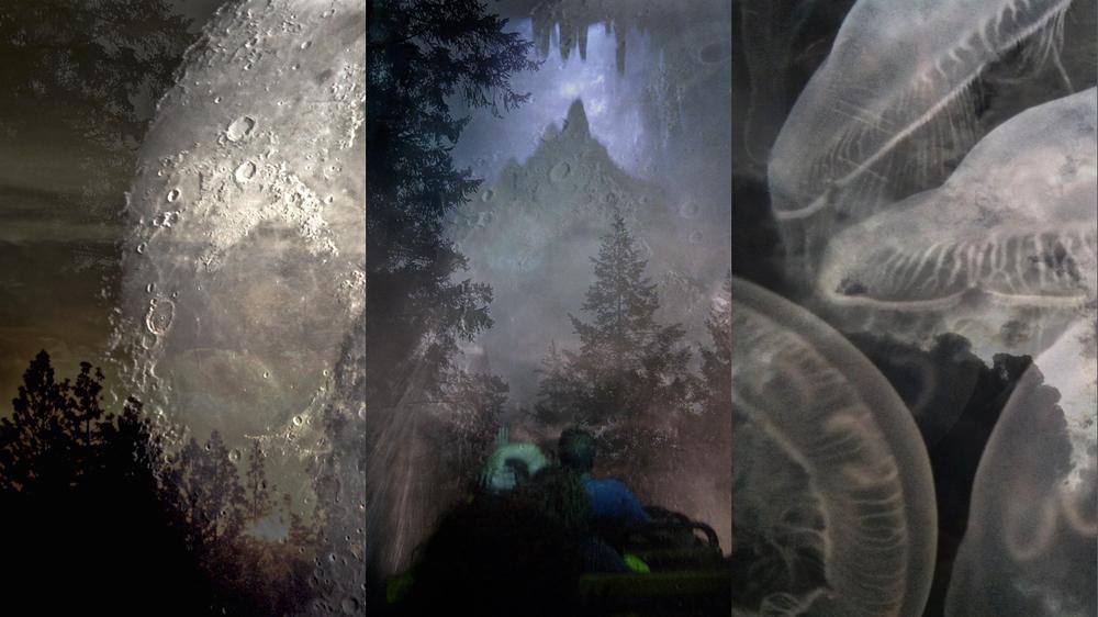 1366x1768-triptych-18DECJpgs.004.jpeg