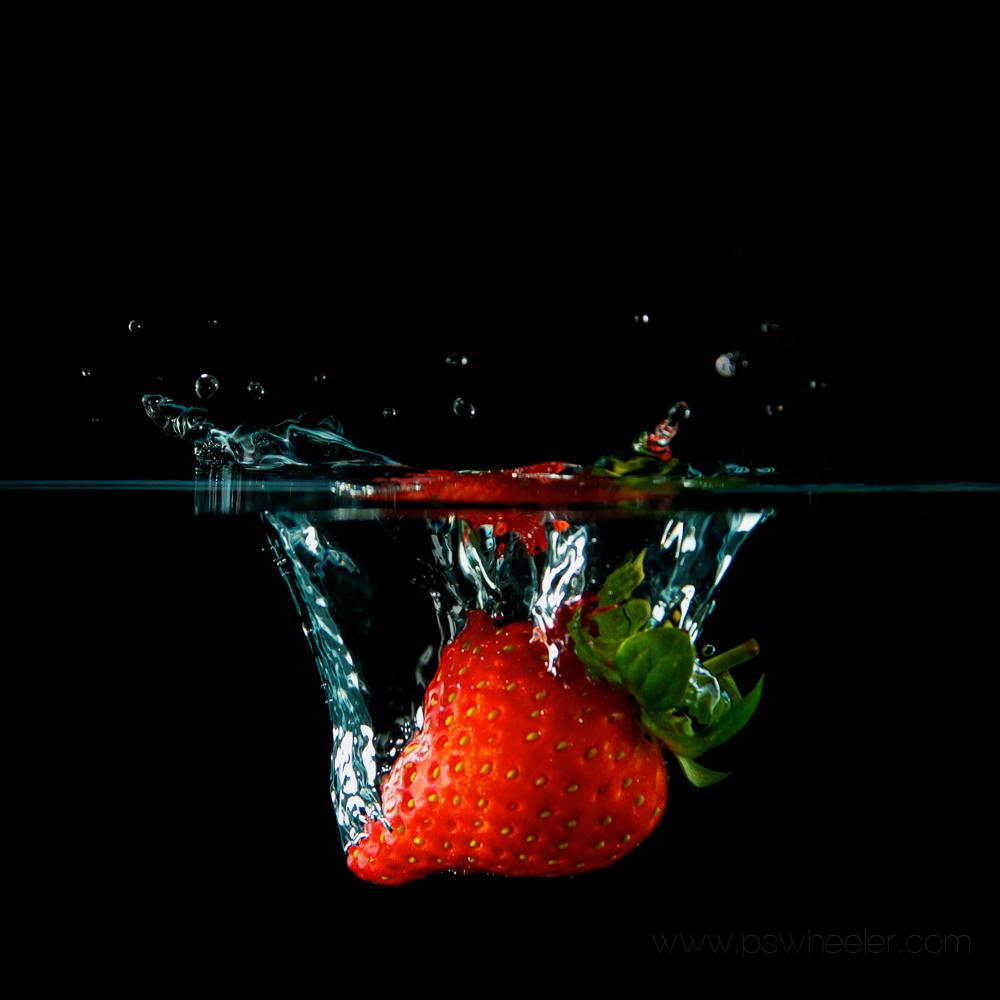 © www.pswheeler.com-16.jpg