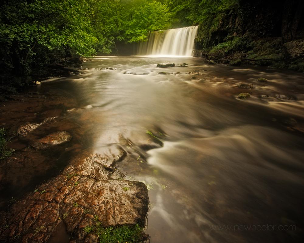 © www.pswheeler.com-74.jpg