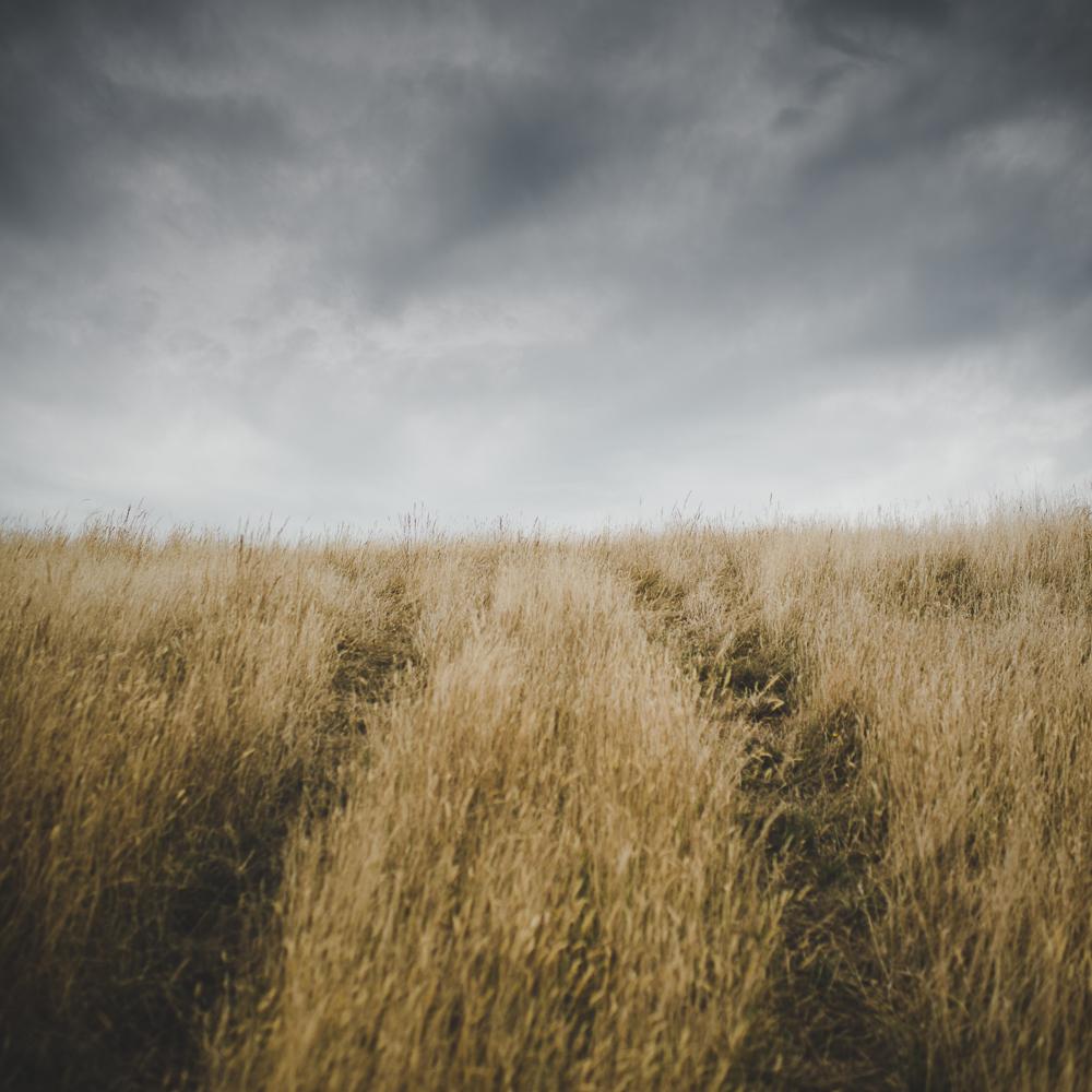 © www.pswheeler.com-12.jpg