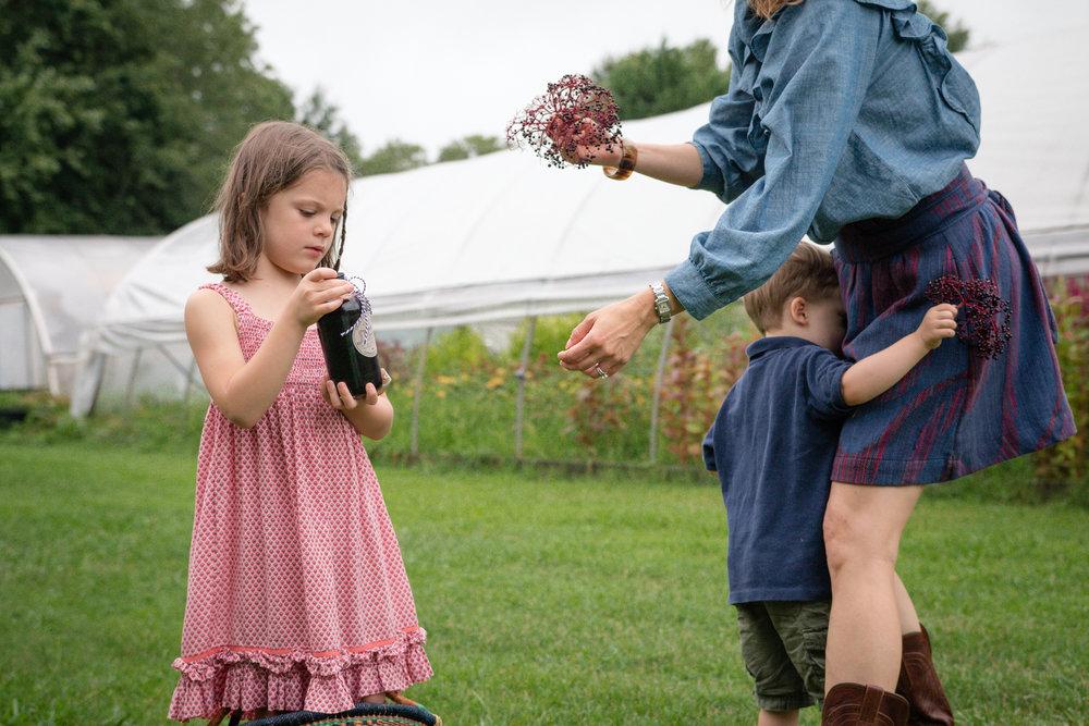Elderberry Harvest-20.jpg